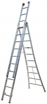 Ladder Rocky